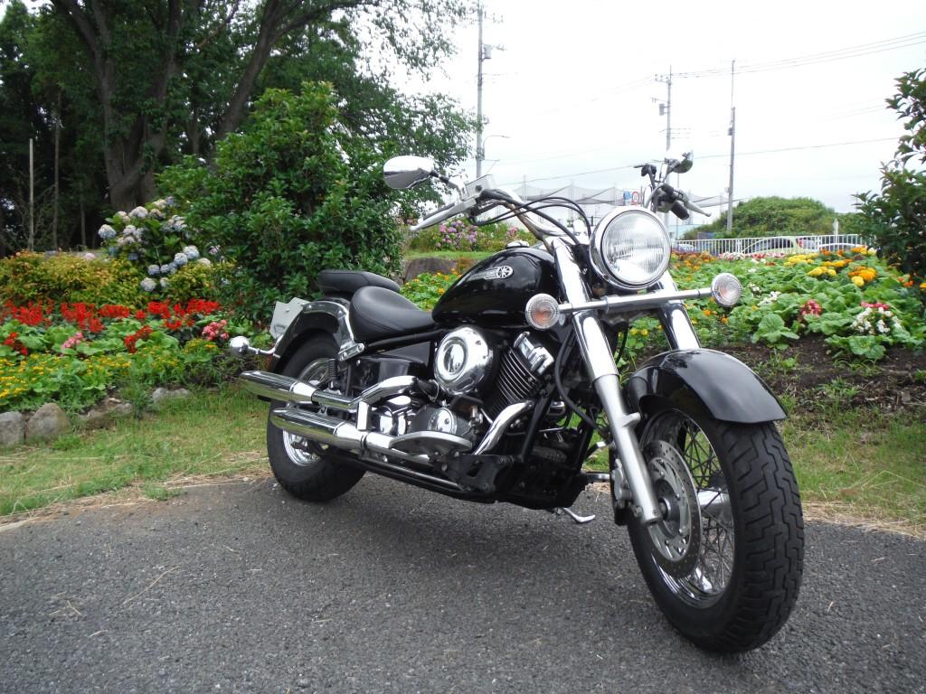 ドラッグスタークラシック(FC-002) - 【公式】レンタルバイクのベストBike® 本厚木駅前